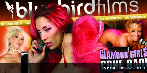 TelephoneModels.com TV Babes XXX Volume 1 Cover TV Babes XXX Volume 1   Heavenly, Porcha Sins, Mel Rook and More...